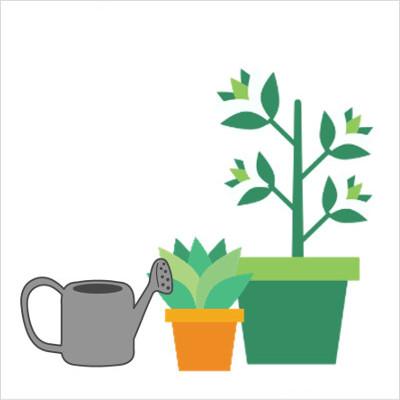 Services - Plants